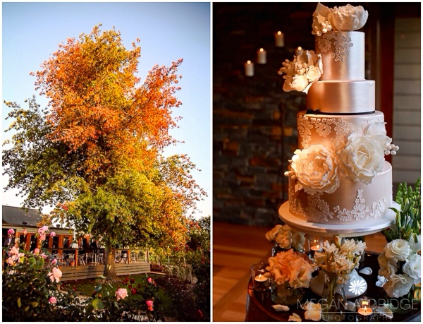 Melbourne Wedding Experts recommended in Melbourne cake by Kiss My Cakes Melbourne
